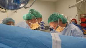 dr_meredith_tassone_female_obstetrician+melbourne (3)
